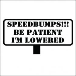 Speed Bumps Be Patient I'm Lowered Vinyl Sticker for your wall, car or truck.